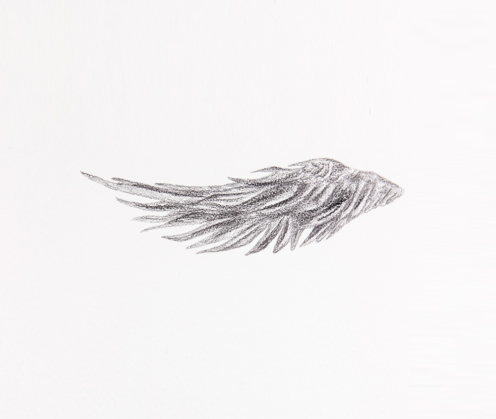 Gersony: Há lados II (1) - Graphite on paper - 15x28cm